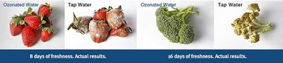 ozone-effect